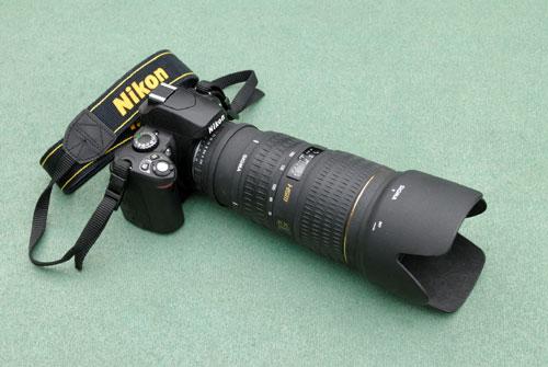 Nikon_D40x_DSC2501