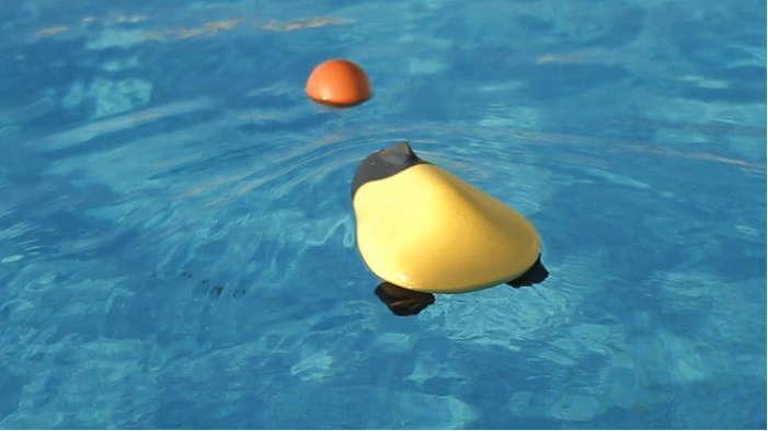 ziphius-aquatic-drone