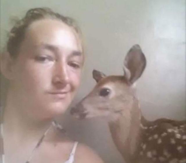 selfie-faon
