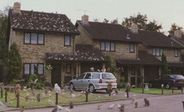 dursley-maison