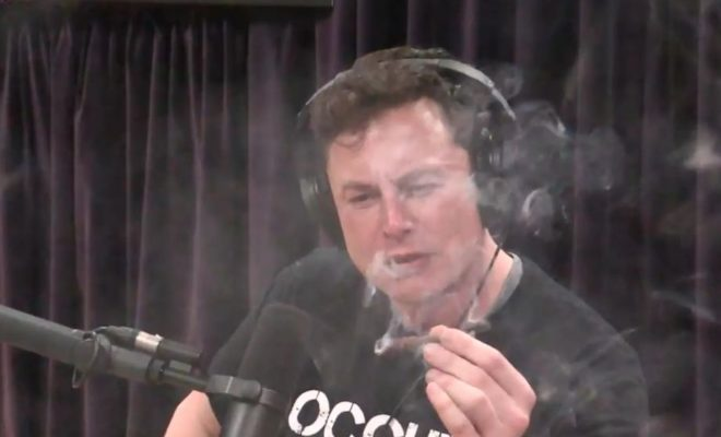 Musk joint