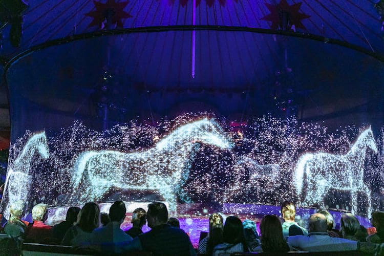 Ce cirque allemand utilise des hologrammes au lieu d'animaux réels