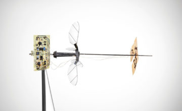 RoboBee : un mini robot capable de voler seul comme un insecte