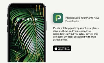 Planta : une application qui vous permet de garder vos plantes en vie
