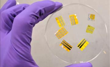 Des chercheurs ont créé un tatouage lumineux à base d'OLED